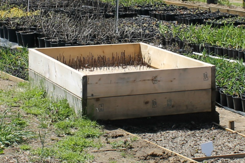 garden build a make bed to easy raised diy beds