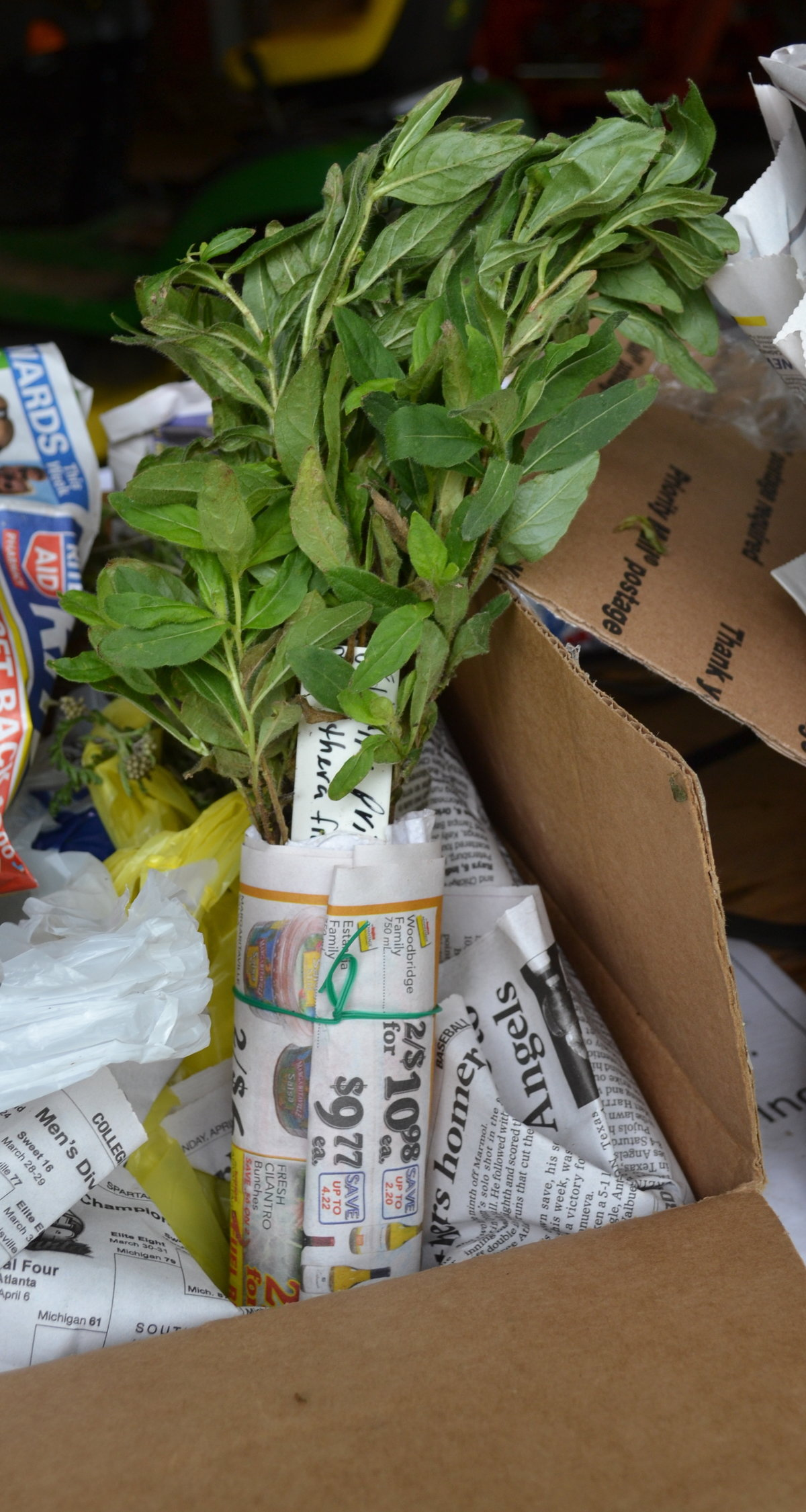 The nursery tag safely and prominently displayed on a bundle of plants.