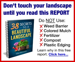 Don't touch your landscape until you read this report
