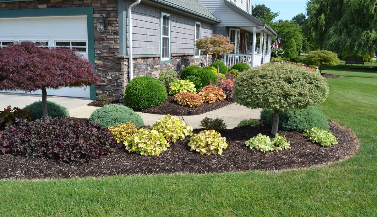 A colorful landscape design idea for a sidewalk planting.