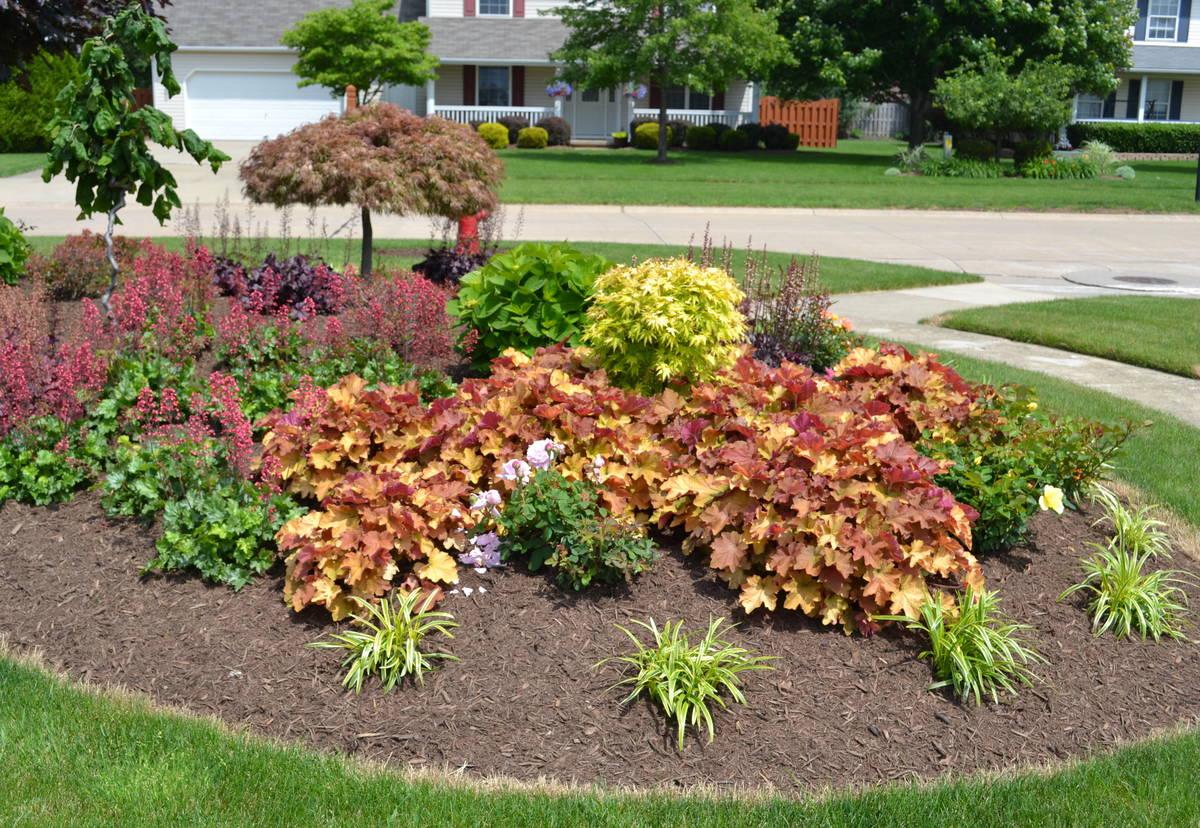 23 Landscaping Ideas With Photos Mike S Backyard Nursery