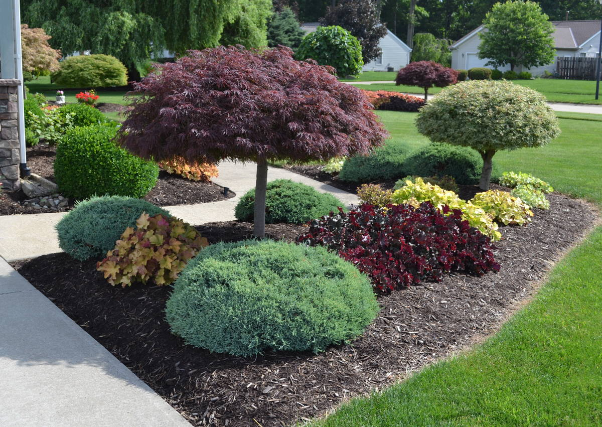 Tree For Front Yard Ideas Part - 23: Landscape Design Idea For The Outside Of A Sidewalk.
