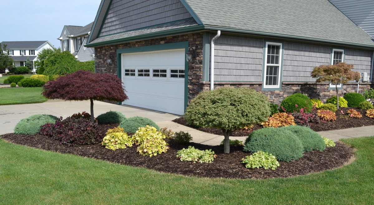 Landscaping Around A Group Of Trees : Using heuchera coral bells to add color a landscape design