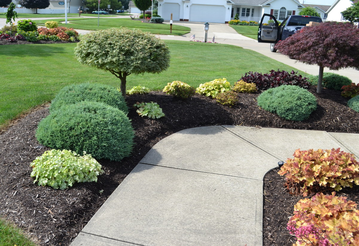 Evergreen Azaleas in a Landscape Design. & 23 Landscaping Ideas with Photos.