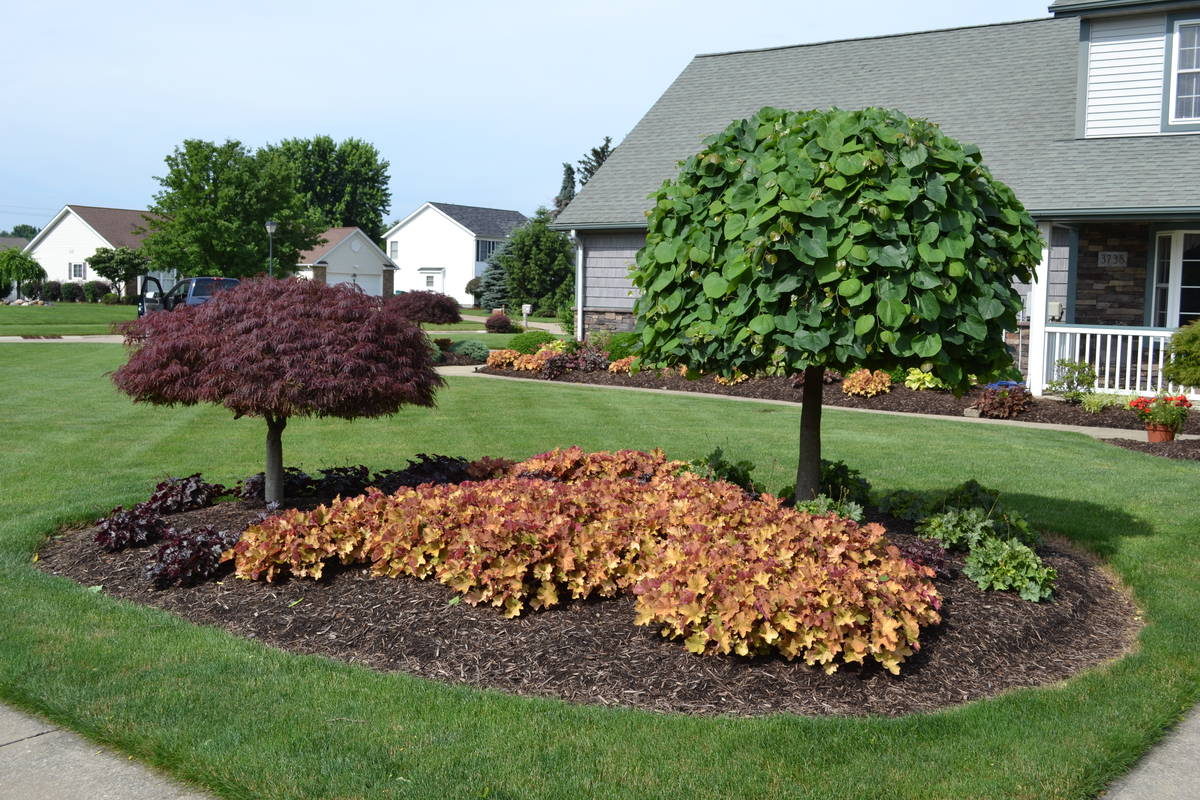 23 landscaping ideas with photos for Front lawn plant ideas