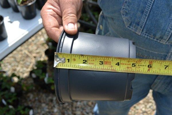 Plastic nursery pot height