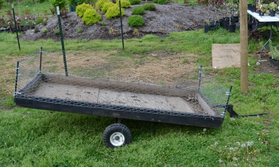 Homemade garden cart for moving small nursery plants.