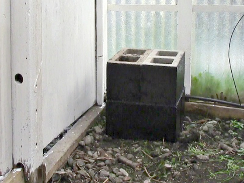 Backyard Greenhouse Heater :  cinder blocks will absorb heat from any sunlight that touches them