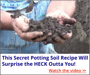 My Secret Potting Soil Recipe