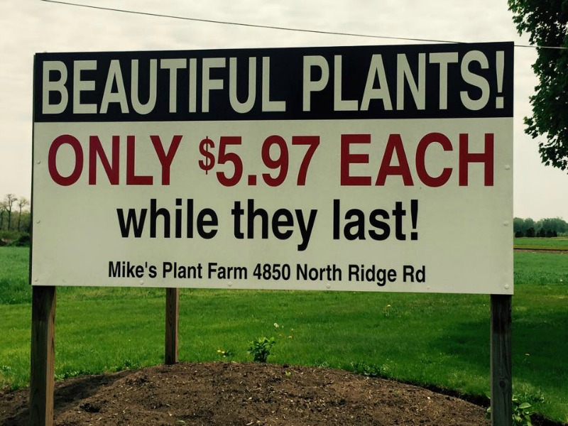 4850 Ridge Rd, Perry, Ohio